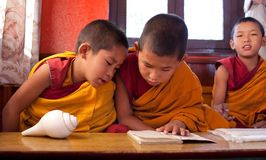Two little buddhist monks Stock Image