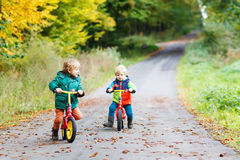 Two little children having fun on bikes in autumn forest. Stock Photos