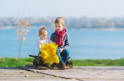 Two little children sits on a wood bench with a bouquet of autumn maple leaves. stock images