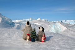 Two little cubs of penguins stand on the snow. Next to them is a Christmas tree and figurines of the grandfathers of frosts. royalty free stock photos