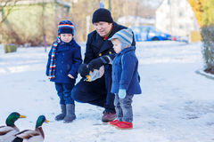 Two little cute funny twin boys and their dad feeding ducks Royalty Free Stock Photos