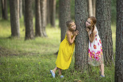 Two little cute girls posing near the tree in a pine forest. Summer. Stock Photo