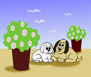 Two little Dogs. Sitting together between two big flower pots Stock Images