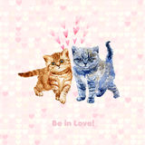 Two little fluffy kittens. Cute greating card. Royalty Free Stock Photography