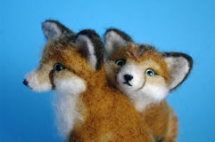 Two Little Fox Kits Stock Image