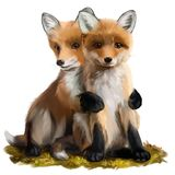 Two little foxes. Watercolor painting royalty free stock photos