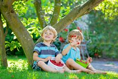 Two little friends, kid boys having fun on raspberry farm in summer. Children eating healthy organic food, fresh berries. Happy twins. Cute gardeners, toddlers royalty free stock image