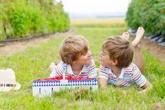 Two little friends, kid boys having fun on raspberry farm Stock Photo