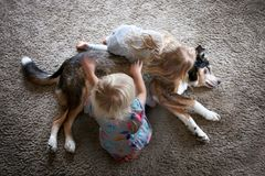 Two Little Kids HUgging and Petting their Pet Dog stock photos