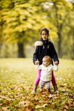 Two little girl`s sisters in autumn park royalty free stock photos
