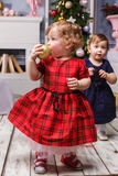 The two little girl standing at studio with christmas decorations Royalty Free Stock Photos