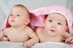 Two little girls Royalty Free Stock Photos