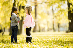 Two little girls at the autumn park. Little girls in the park in autumn Stock Image