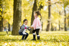 Two little girls at the autumn park. Little girls at the autumn park Royalty Free Stock Image