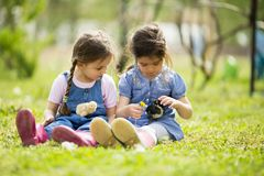 Two little girls with chickens Stock Photography