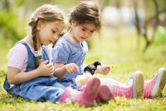 Two little girls with chickens Stock Images