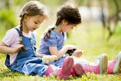 Two little girls with chickens Royalty Free Stock Photos