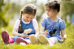 Two little girls with chickens Royalty Free Stock Images