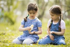 Two little girls with chickens Royalty Free Stock Image