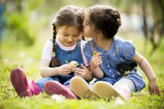 Two little girls with chickens. At sunny day Stock Images