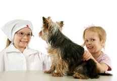 Two little girls  with dog Stock Photos