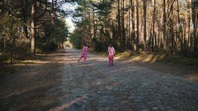 Two little girls are running in the summer forest. Two little girls in dresses are running along the road in the summer forest stock footage