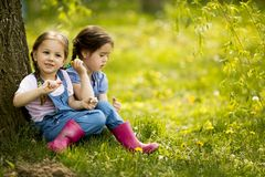 Two little girls at the farm Royalty Free Stock Photo