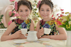 Two little girls in floral dresses. Reading book and drinking tea stock image