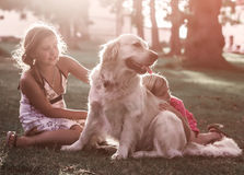 Two little girls with golden retriever dog Royalty Free Stock Image