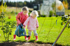 Two little girls helping in a garden Stock Photos