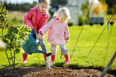 Two little girls helping in a garden Stock Images
