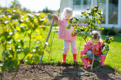 Two little girls helping in a garden Royalty Free Stock Photo