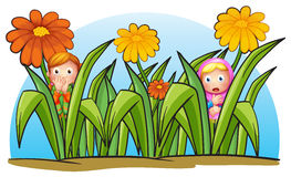 Two little girls hiding Stock Image