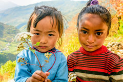 Two little girls in Nepal holding flowers in their hands Stock Images