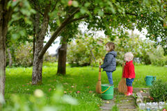 Two little girls picking apples in a garden Royalty Free Stock Image