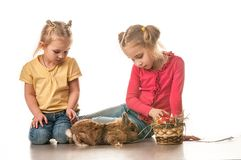 Two little girls playing with Easter bunny on a white background Stock Image
