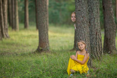 Two little girls pose for the camera among the pines in the Park. Happy. Royalty Free Stock Photography