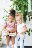 Two little girls read a book on the background of plants in pots royalty free stock photo