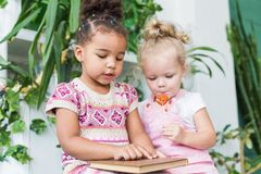 Two little girls read a book on the background of plants in pots royalty free stock image