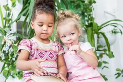 Two little girls read a book on the background of plants in pots royalty free stock photos