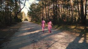 Two little girls are running in the summer forest. Two little girls in dresses are running along the road in the summer forest stock video