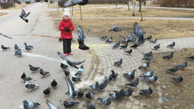 Two little girls scare pigeons in the park stock video