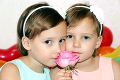 Two little girls twins in birthday with flower rose on the background of bright colored balls close-up royalty free stock images