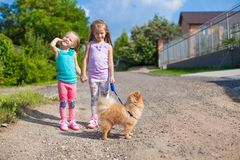 Two Little girls walking with small ??dog on a royalty free stock image