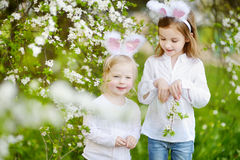 Two little girls wearing bunny ears on Easter Stock Images