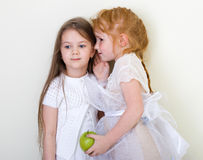 Two little girls whispering Stock Photography