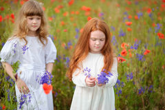 Two little girls in white dress playing in poppy flower field. C Stock Photography
