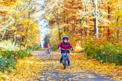 Two little kid boys with bicycles in autumn forest Royalty Free Stock Photo