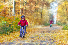 Two little kid boys with bicycles in autumn forest Stock Images