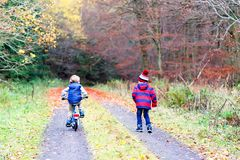 Two little kid boys with bicycles in autumn forest Royalty Free Stock Images